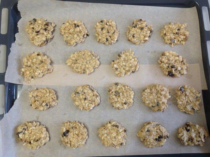 Овсяная смесь для печенья на протвине